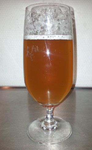 Humlestorm pale ale - ølbryg nr. 9